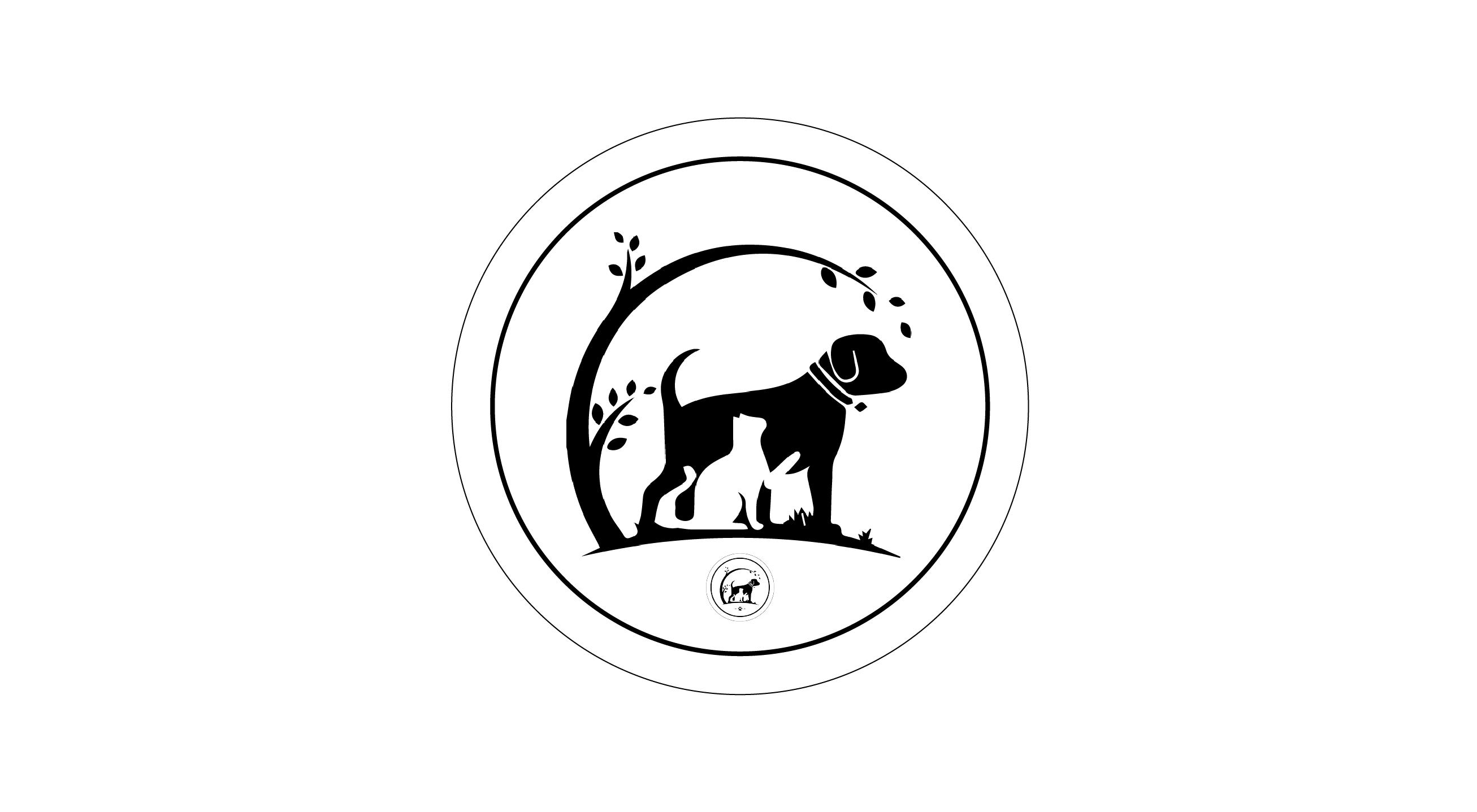 Formation Manon Morrissette