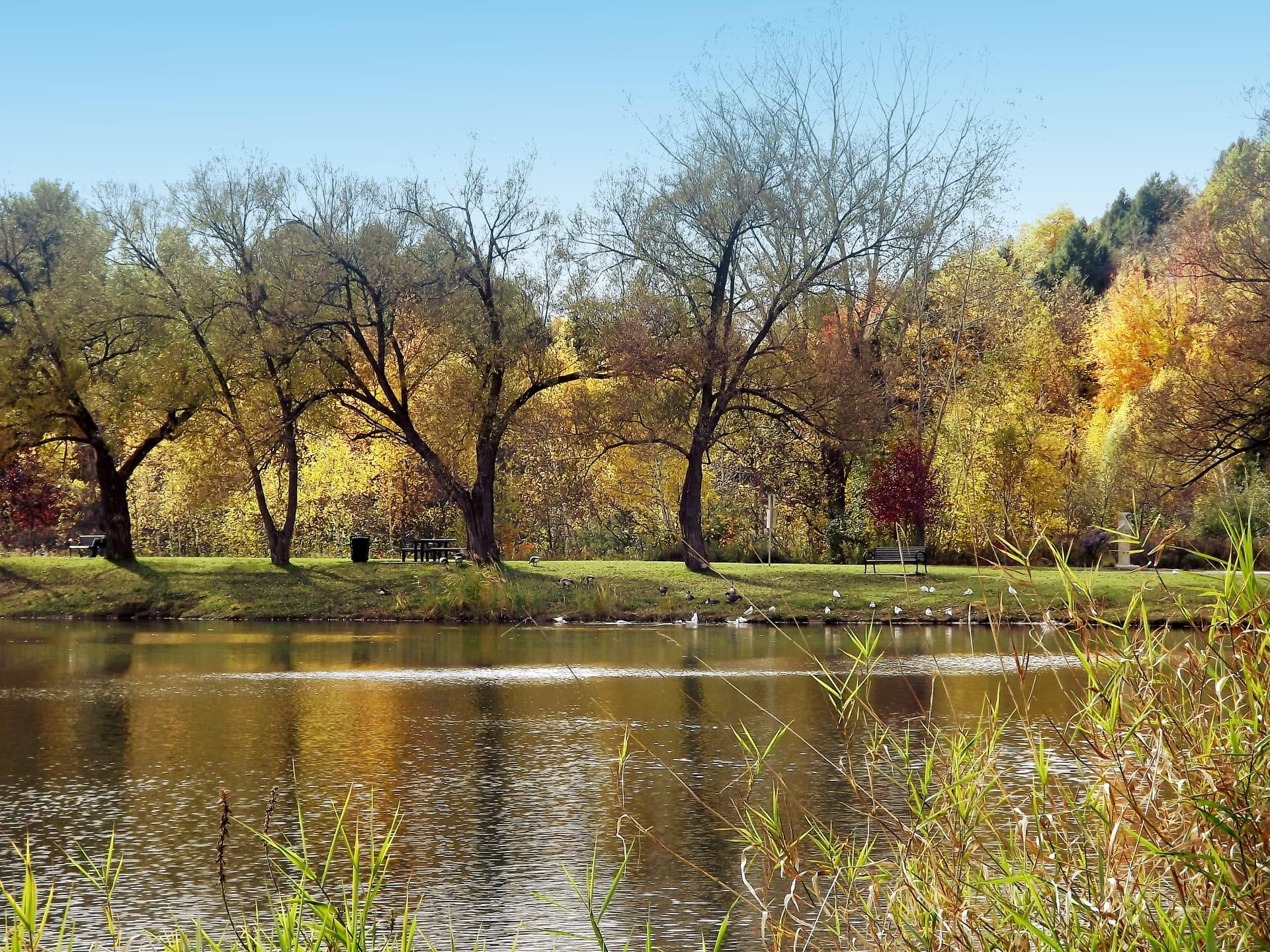 Parc du Grand-Coteau automne